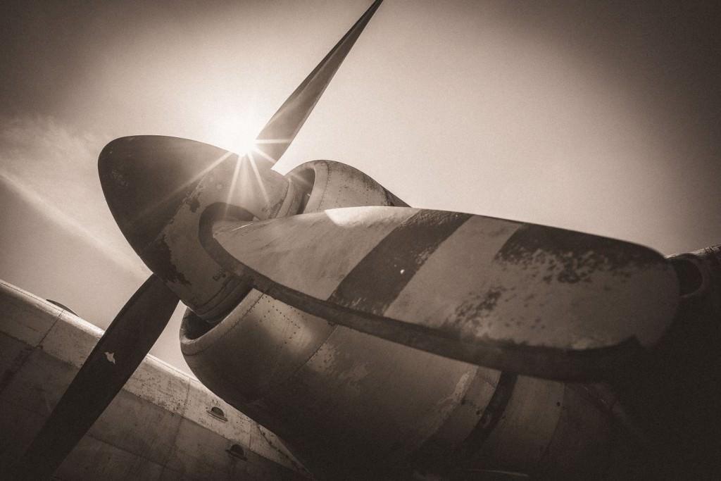 Les ailes de la victoire